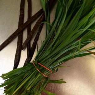 lemongrass1