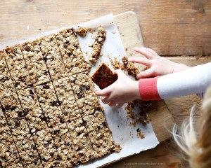 Lizzie Homemaker chocolate chip granola bars are absolutely delicious