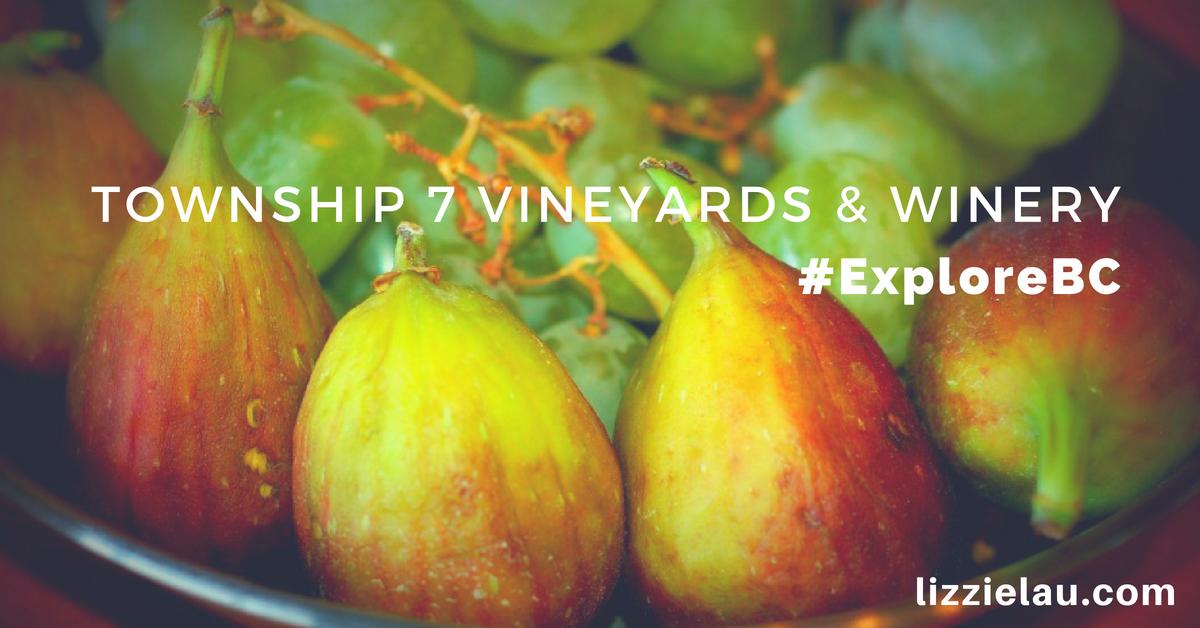 Township7 Vineyards and Winery #ExploreBC
