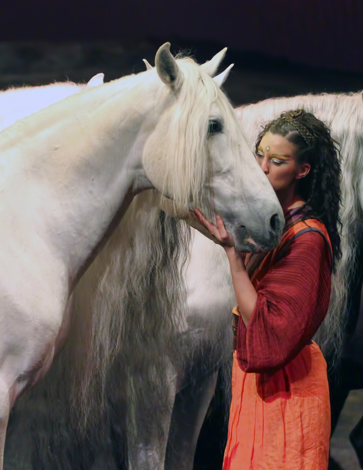 A Show You Don't Want To Miss Odysseo by Cavalia