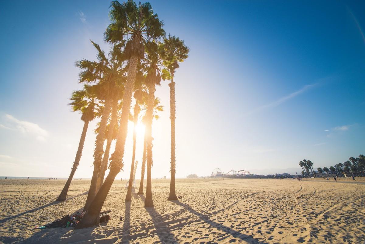 Beach Santa Monica With Kids