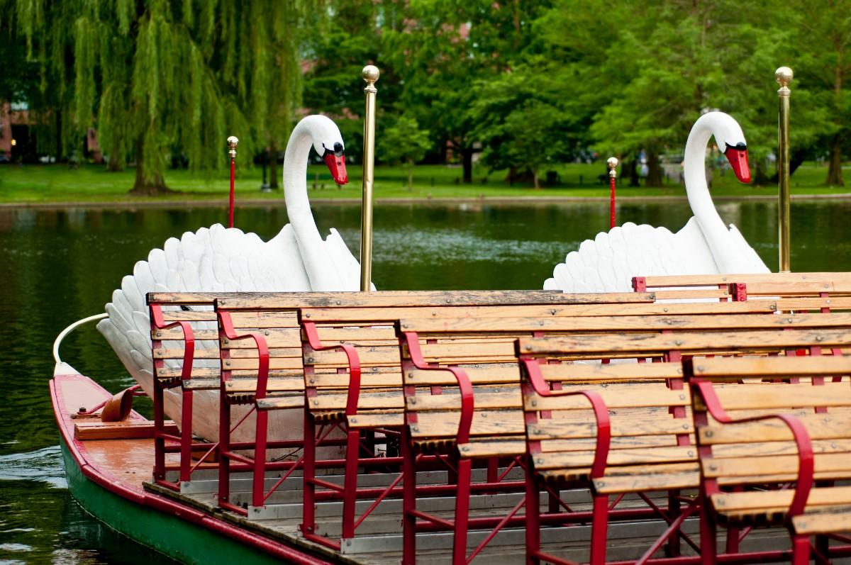 Public Garden Swan Boats Boston with kids