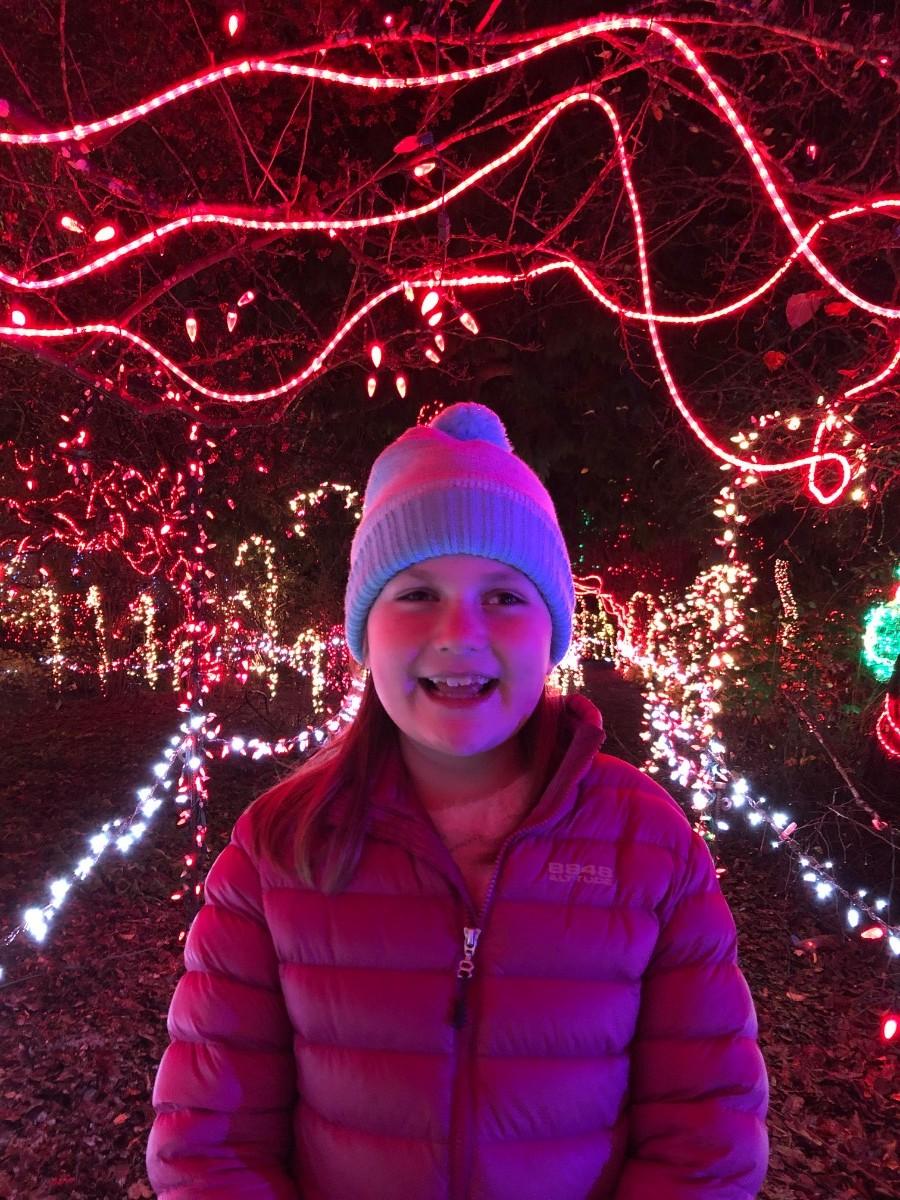 Vancouver in Winter - VanDusen Festival of Lights
