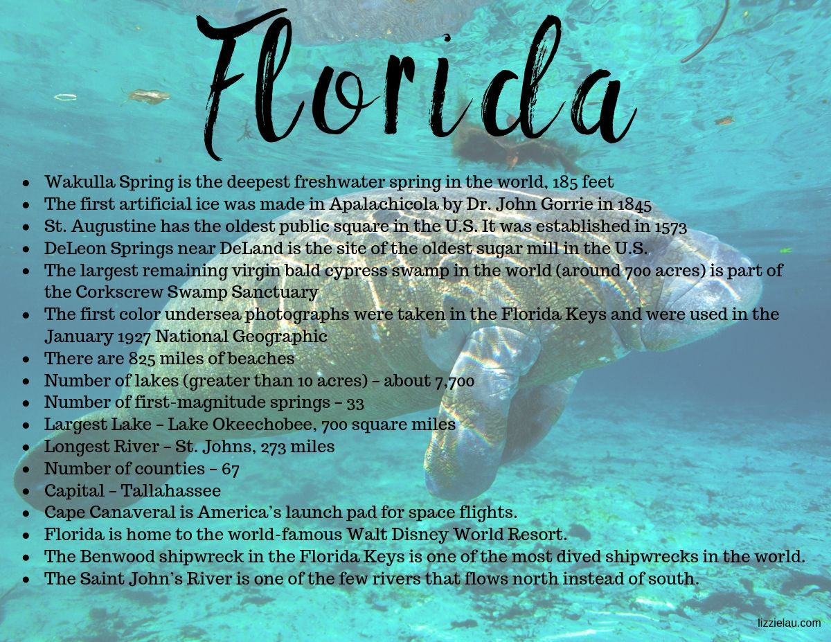 Cool facts about Florida