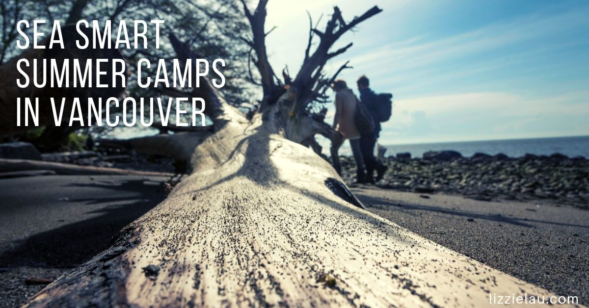 Sea Smart Summer Camps in Vancouver