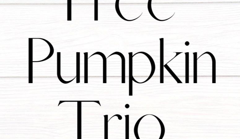 Diy Dollar Tree Pumpkin Trio