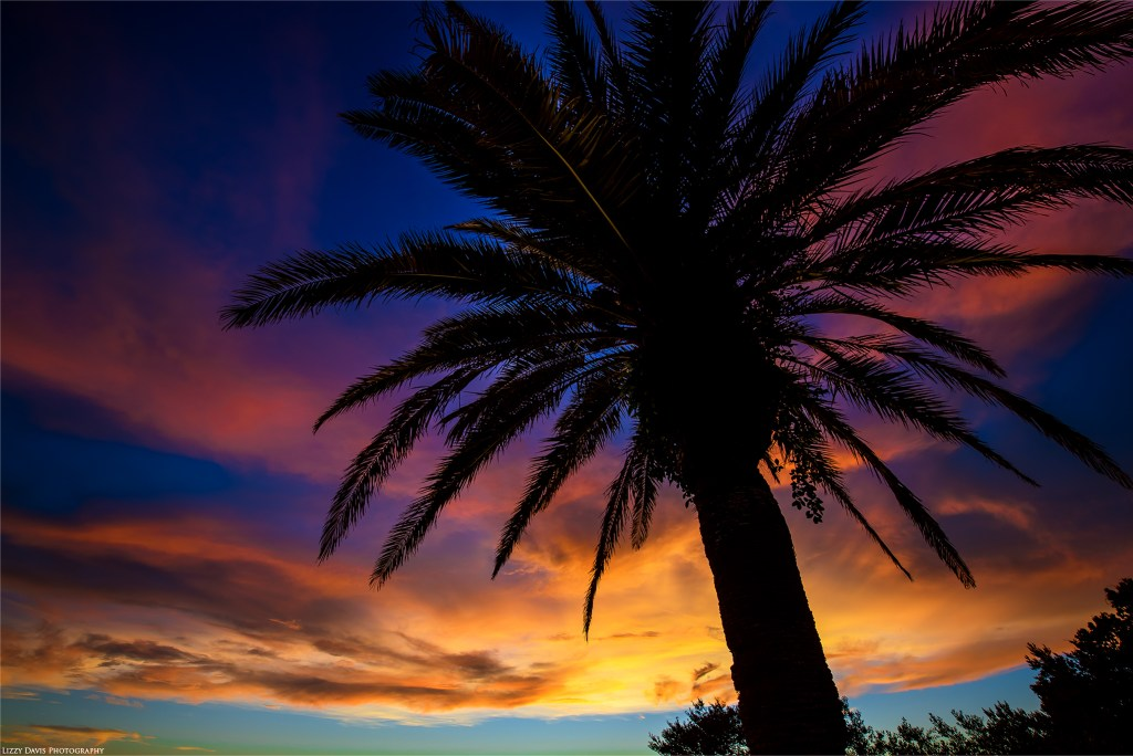 Best places to watch sunset in Clearwater, FL. ©Lizzy Davis Photography