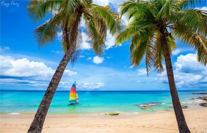 Beaches of Barbados in Photos: Mullins Beach