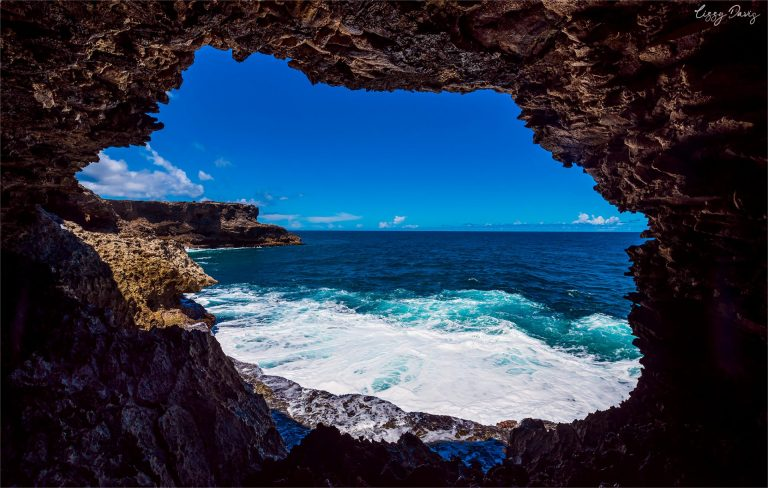 Exploring Barbados: The Wondrous Sea Caves at Animal Flower Cave