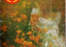 Mahler - Bral bez ljubavi
