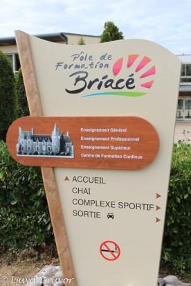 Briace-Skylt-6807