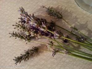 Lavendelsnaps i vardande