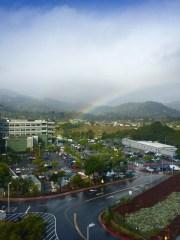 spring rainbow 9438