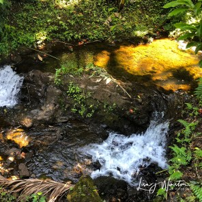 48 sunlit waterfall