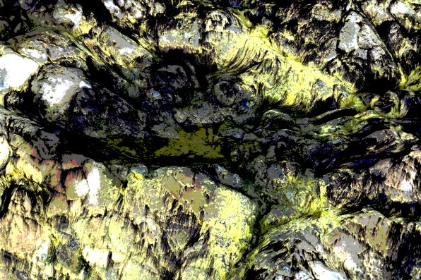 img 6891green lichen post