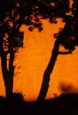 Le Lavandin Shadow Window