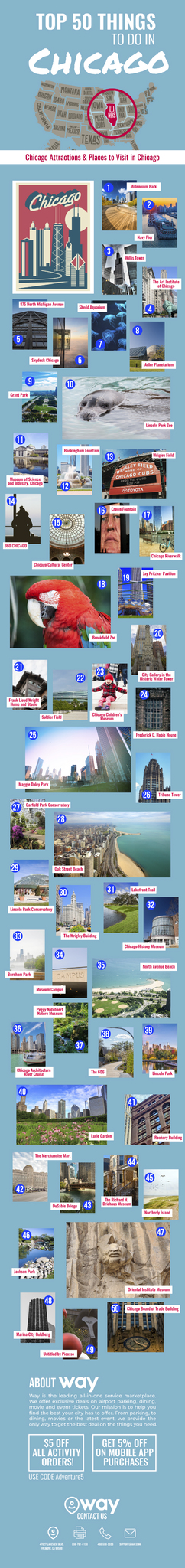 Top-Things-to-Do-in-Chicago-infographic-lkrllc