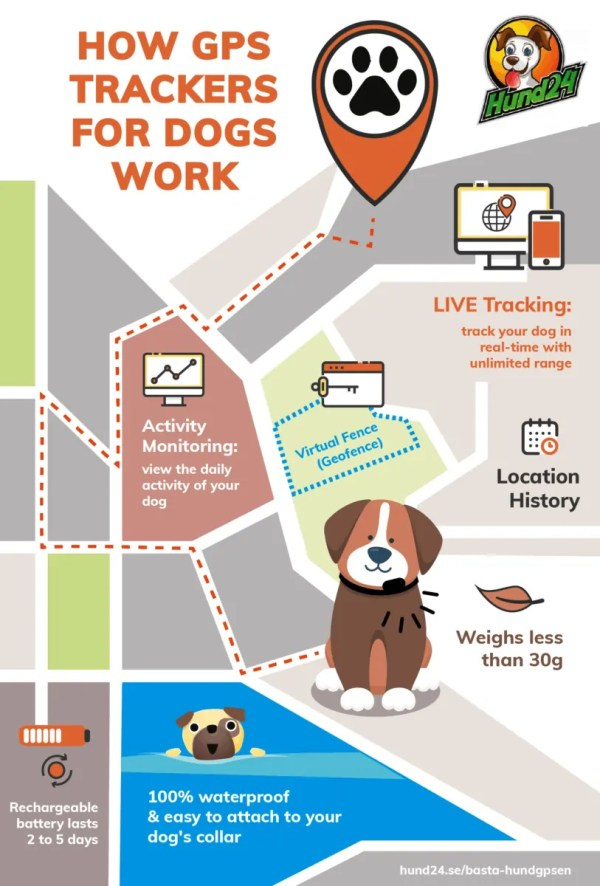 hund24-gps-tracker-dogs-infographic