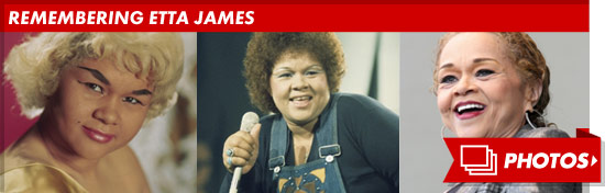 1219_etta_james_years_remembering_footer