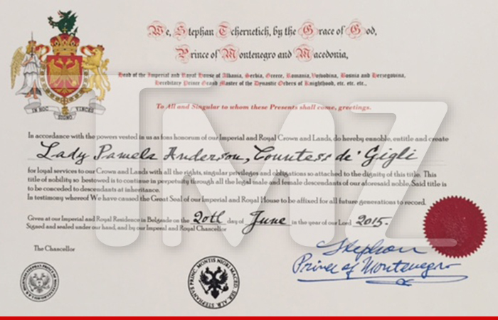 0620-sub-pam-anderson-certificate-tmz-01
