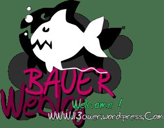 https://ll3auer.wordpress.com BAUER