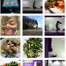 Sylvia Petro Fit Instagram