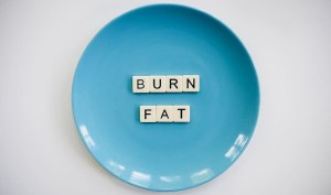burn fat plate - lose weight without exercise