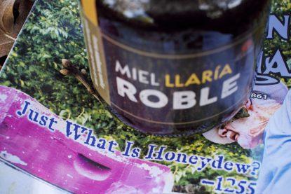 miel de mela de roble ecologica