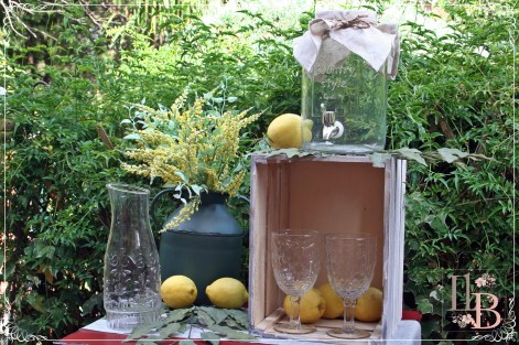 Rincón limonada
