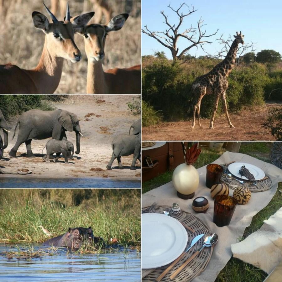 Shooting de Llega mi Boda: Y soñé con África...
