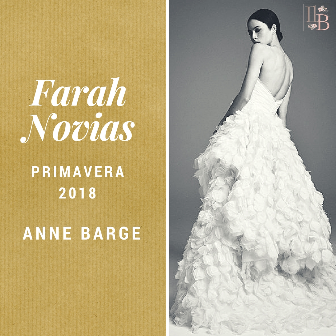 Anne Barge2