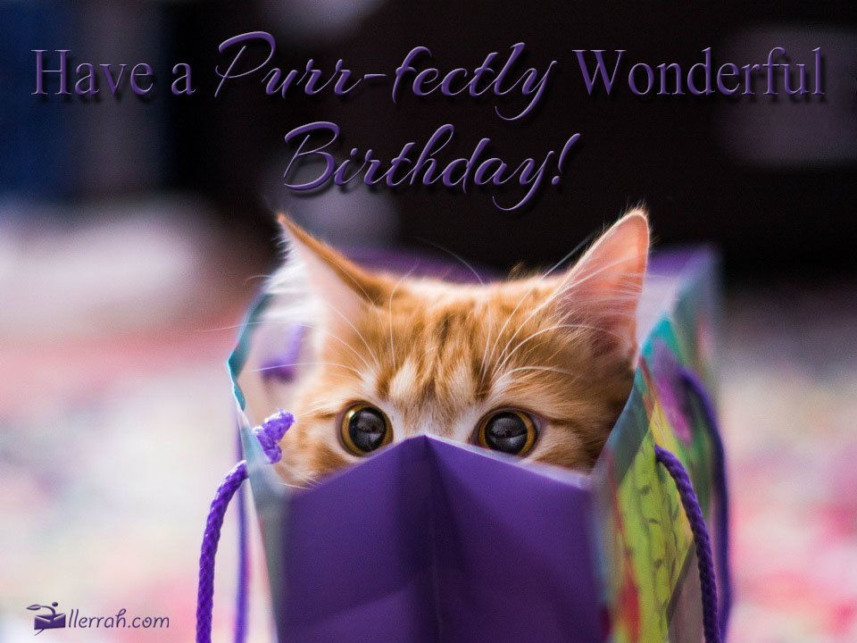 Have A Purr Fectly Wonderful Birthday