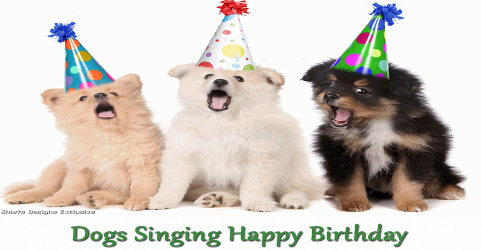 Dogs Singing Happy Birthday
