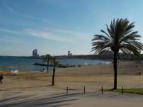 The beach @ Barcelona