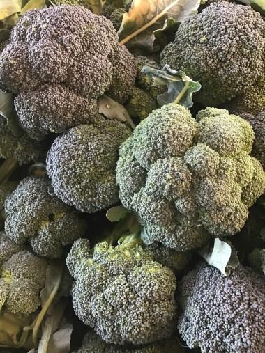 broccoli-crowns