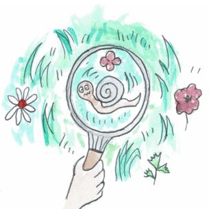 illustration intelligence naturaliste