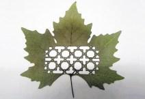 Spanish artist Lorenzo Duran leaf carving 1