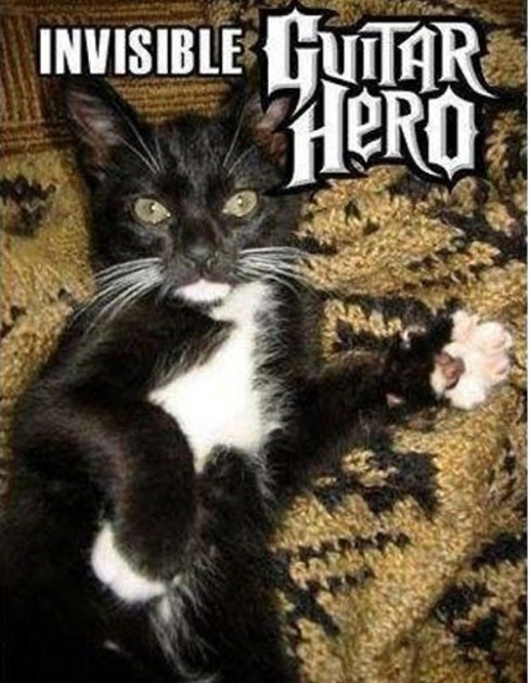 Invisible_cat_guitar_hero