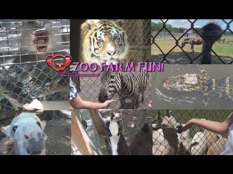 Feeding Crazy Funny Animals at a Zoo Farm!