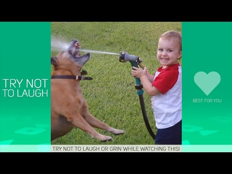 Try Not To Laugh Or Grin – Funny Kids Dog Fails Compilation !