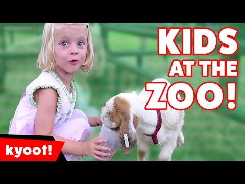 The Cutest Kids React to The Funniest Zoo Animals of 2016 Weekly Compilation | Kyoot Kids