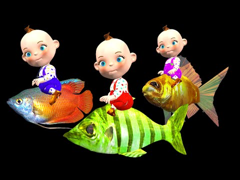 Three Little Babies On Three Little Fishes Watching Wild Animals | Funny Little Babies Collection