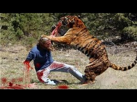 Danger of wild animals attack human