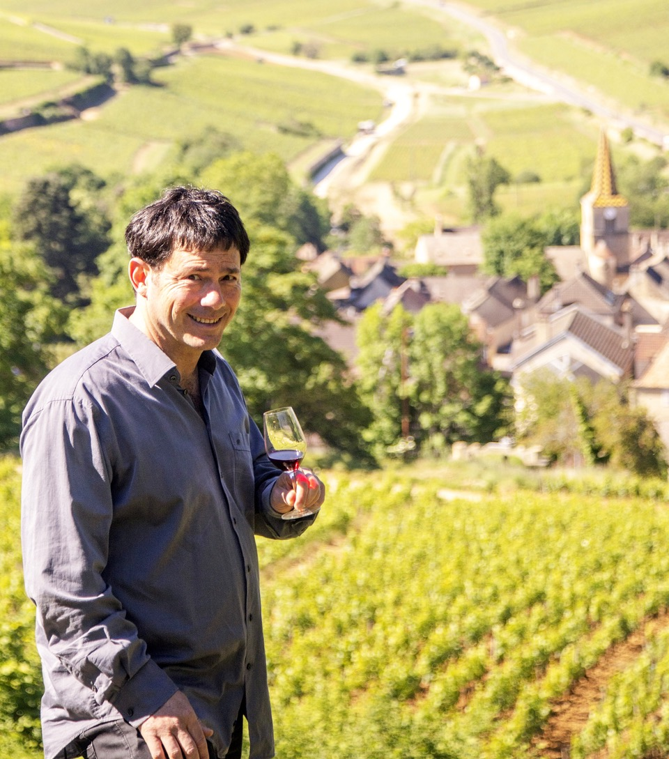 StevieBobès, Bourgogne Wine Ambassadeur.