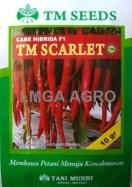 CABAI TM SCARLET