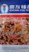 Selada Red Rapid, Sawi Red Rapid, Selada Brintik Red Rapid, Known You Seed, Harga Murah, Lmga Agro, Benih sawi dan Selada