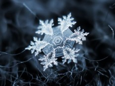 Snow, snowflakes, ice - they all have magic in them.