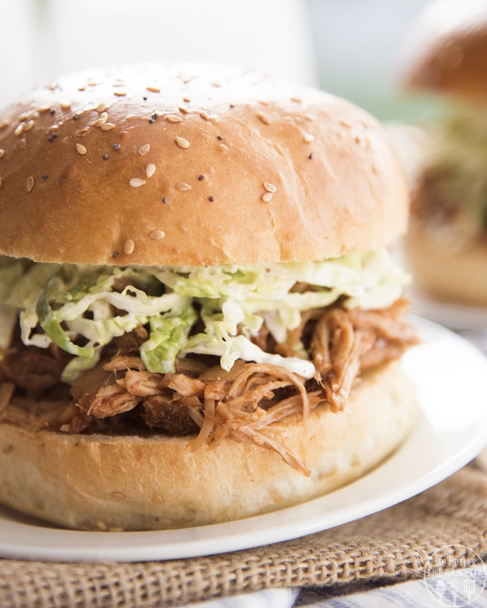 BBQ Pulled Pork Slow Cooker