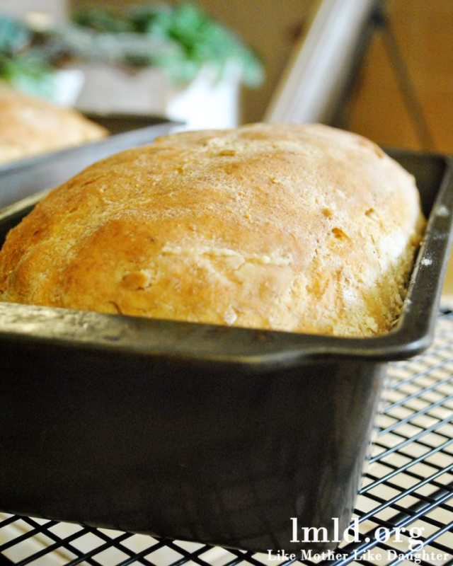 Wheat and Oat Bread