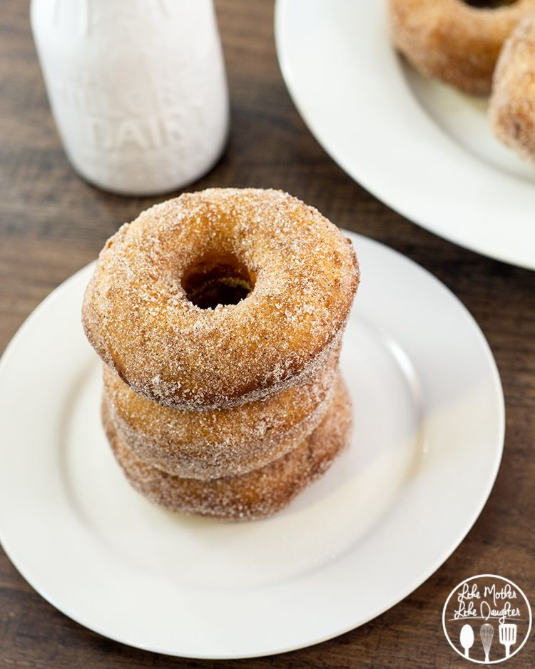 Cinnamon Sugar Biscuit Donuts - when you're eating these delicious cinnamon sugar donuts, you'd never guess that they're made from canned biscuits. So tasty and they make a perfect quick breakfast!